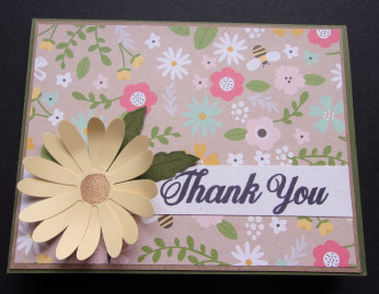 Thank-you-daisy